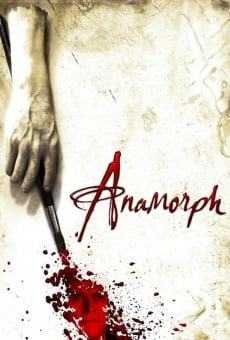 Anamorph on-line gratuito