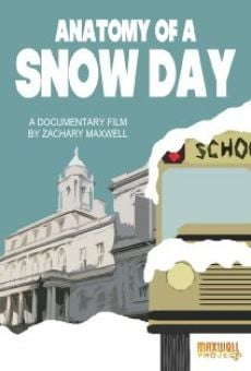 Película: Anatomy of a Snow Day
