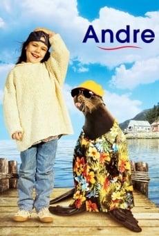 Andre, una foca en mi casa online