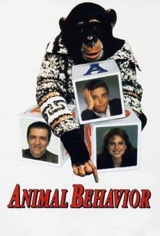 Ver película Animal Behavior
