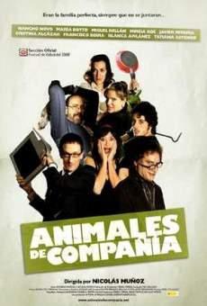 Ver película Animales de compañía