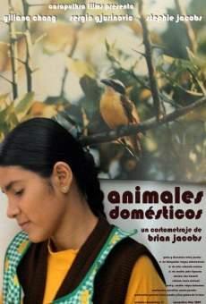 Ver película Animales domésticos