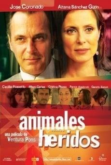 Ver película Animales heridos