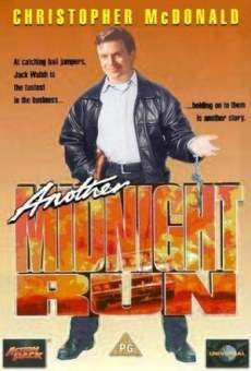 Ver película Another Midnight Run