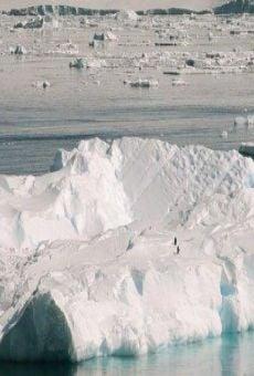 Ver película Antarctica : Tales of Ice
