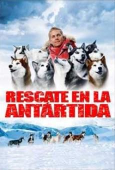 Ver película Antártida