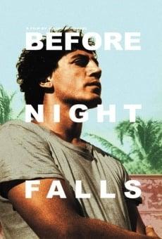 BEFORE NIGHT FALLS Full Movie (2000) Watch Online Free
