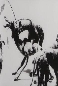 Ver película Anthropo-Cynical Force