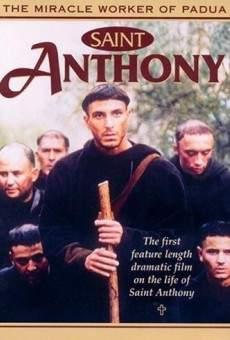 Ver película Antonio de Padua