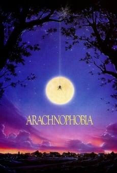 Aracnofobia online