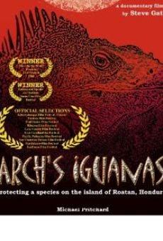 Arch's Iguanas