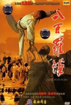 Ver película Arhats in Fury