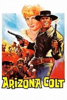Il pistolero di Arizona online