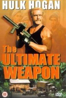 Ver película Arma final