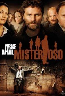 Ver película Arne Dahl: Misterioso