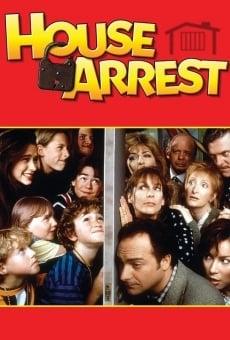 Ver película Arresto en casa