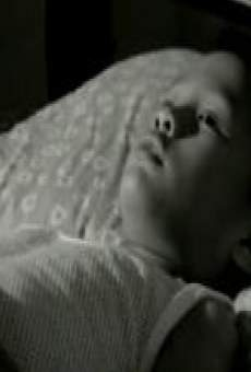 Ver película As I Lay Dying