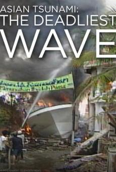 Asian Tsunami: The Deadliest Wave online