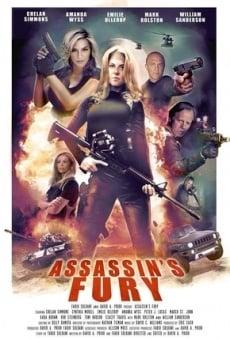 Ver película Assassin's Fury