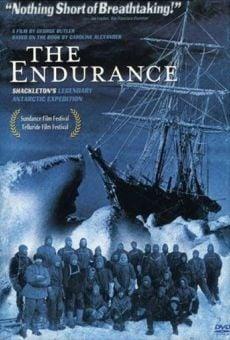 Ver película Atrapados en el hielo