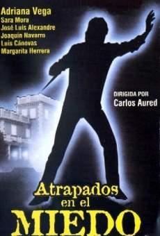Ver película Atrapados en el miedo