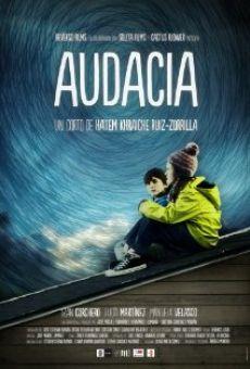 Ver película Audacia