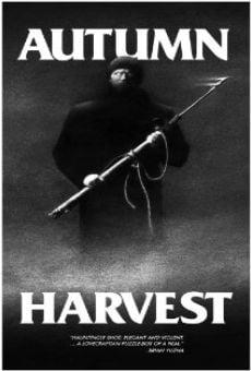 Watch Autumn Harvest online stream