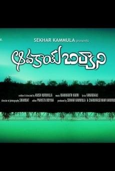 Ver película Avakai Biryani