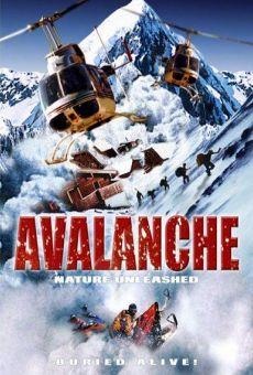 Alerte - Avalanche!