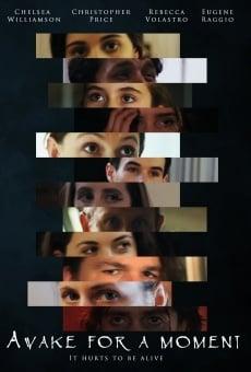 Ver película Awake for a Moment