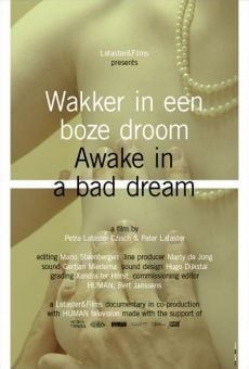 Película: Awake in a Bad Dream