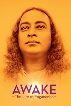 Watch Awake: The Life of Yogananda online stream