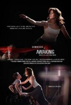 Ver película Awaking