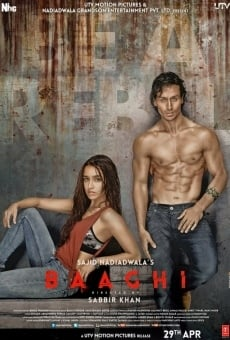 Baaghi on-line gratuito