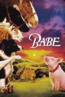 Ver película Babe, el cerdito valiente