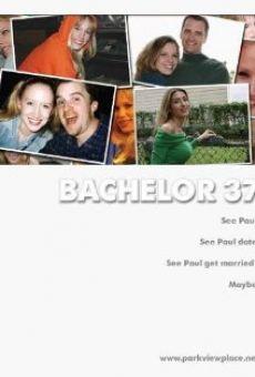Bachelor 37