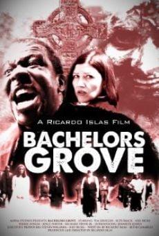 Ver película Bachelors Grove