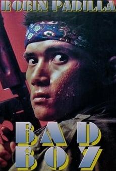 Ver película Bad Boy