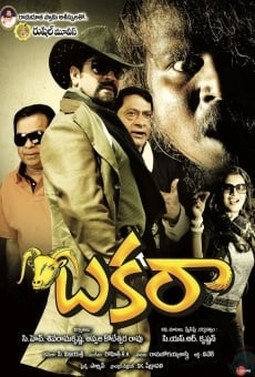 Ver película Bakara