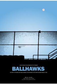 Watch Ballhawks online stream