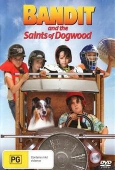 Ver película Bandit and the Saints of Dogwood