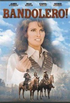 Ver película Bandolero