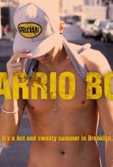 Ver película Barrio Boy