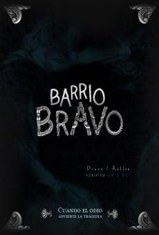 Ver película Barrio Bravo