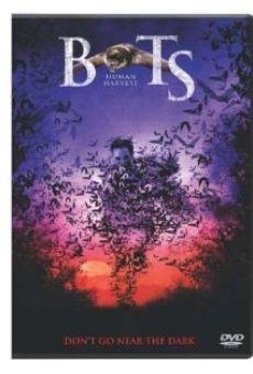 Ver película Bats 2: murciélagos