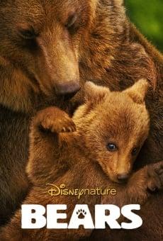 Ver película Bears
