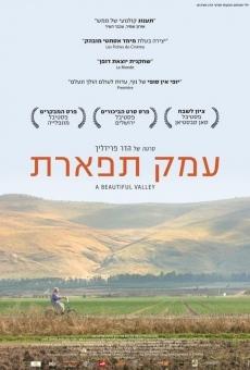 Ver película Beautiful Valley