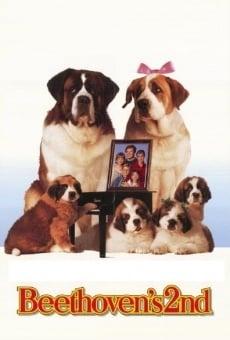 Ver película Beethoven 2: la familia crece