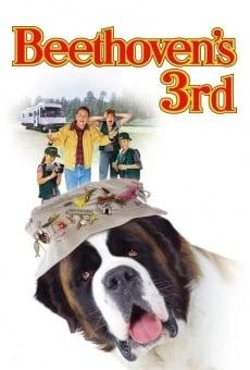 Ver película Beethoven 3: de excursión con la familia