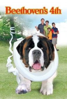Ver película Beethoven 4: enredo en la familia